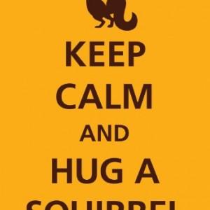 Keep Calm Squirrel Tin Sign